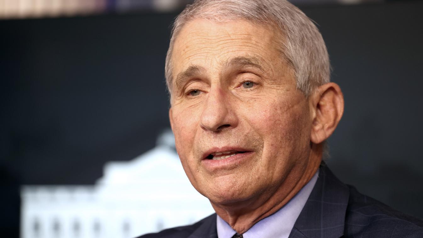 Fauci warns of 'stunning number of deaths' from virus