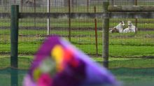 Woman charged over greyhound trainer death