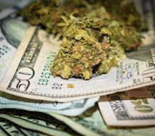 The 5 Best Pot Stocks in the First Half of 2020