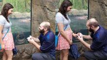 Dieses Paar hat das Verlobungsfoto mit der besten Photobomb