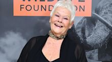 Dame Judi Dench reveals why she does not want to be called a national treasure