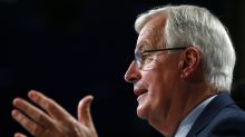 EU willing to extend Brexit transition period for two years, Michel Barnier says