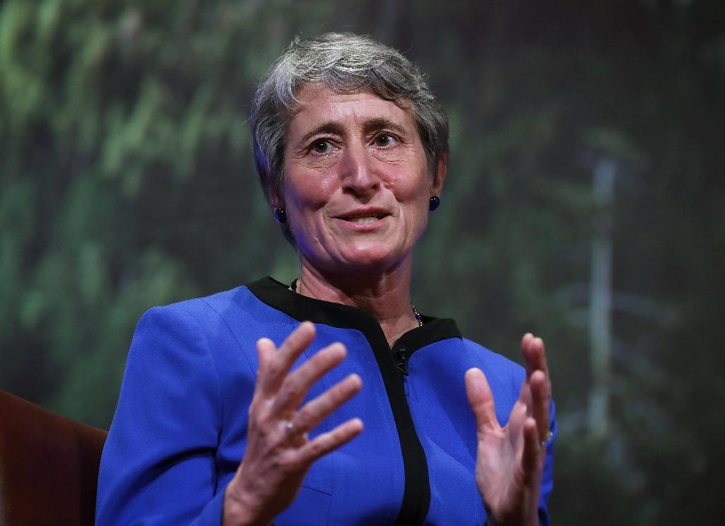 US Interior Secretary Sally Jewell, pictured on April 19, 2016, announced new rules to limit imports, exports and sales of African elephant ivory (AFP Photo/Alex Wong)
