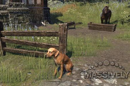 Leaderboard: Does Elder Scrolls' lack of an auction house bother you?