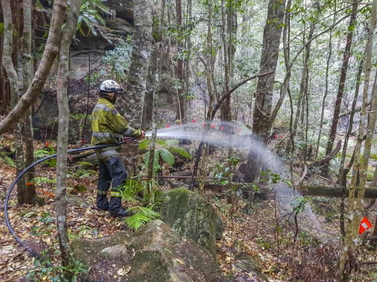 Specialist firefighters were winched into the gorge to set up an irrigation system to provide moisture for the grove (AFP Photo/HO)