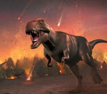 Dinosaur asteroid's trajectory was 'perfect storm'