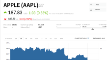 Investing titans Fidelity, Janus Henderson, and JPMorgan loaded up on Apple stock — then it tanked 15%