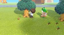 Animal Crossing Fall season changes: How to get pine cones, acorns and more this autumn