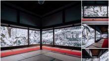日本京都「寶泉院」雪景 白銀屏風靚景Twitter熱傳