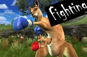 Top 5 on PSP: Fighting