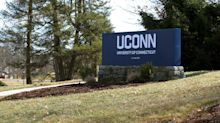 Moose spotted on UConn campus in Storrs