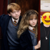 《哈利波特》演員相隔8年大團圓!衛斯理雙胞胎、榮恩、馬份首度同框「顏值排名」大洗牌啊~