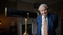 Sir David Attenborough on why he believes some zoos can be 'justified'