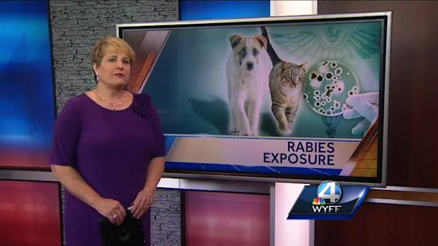 DHEC: 6 people exposed to rabies in Upstate
