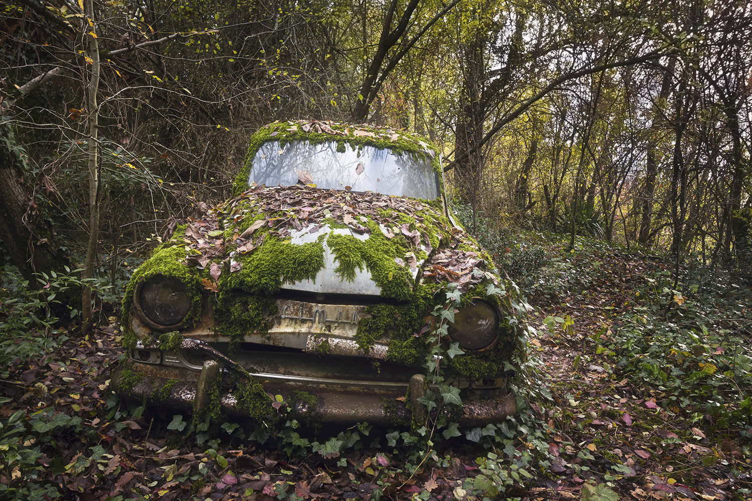<p>The stunning images have been collated in the past five years and were taken at destinations in and around France. (Photo: Roman Robroek/Caters News) </p>