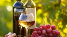 We Think Willamette Valley Vineyards (NASDAQ:WVVI) Can Stay On Top Of Its Debt