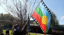 Chile's Mapuche indigenous group fights for rights