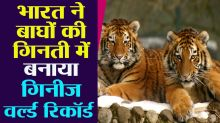 India sets Guinness world record in tiger count, population also increased