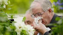 Will a Long Winter Mean a Bad Allergy Season?