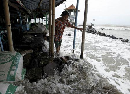 A villager walks on a stone barrier as sea water reaches her house in Mayangan village in Subang, Indonesia's West Java province, in this July 16, 2010 file photo. REUTERS/Beawiharta