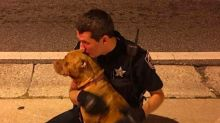 This police officer comforted abandoned pit bulls left in the middle of the road