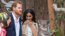 The best moments from Prince Harry and Meghan's first ever royal tour