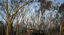 Bombeiros controlam megaincêndio na Austrália
