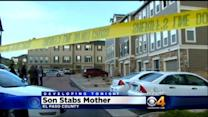 11-Year-Old Boy Allegedly Stabs Mother In El Paso County