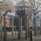 Tripadvisor removes review of Auschwitz museum