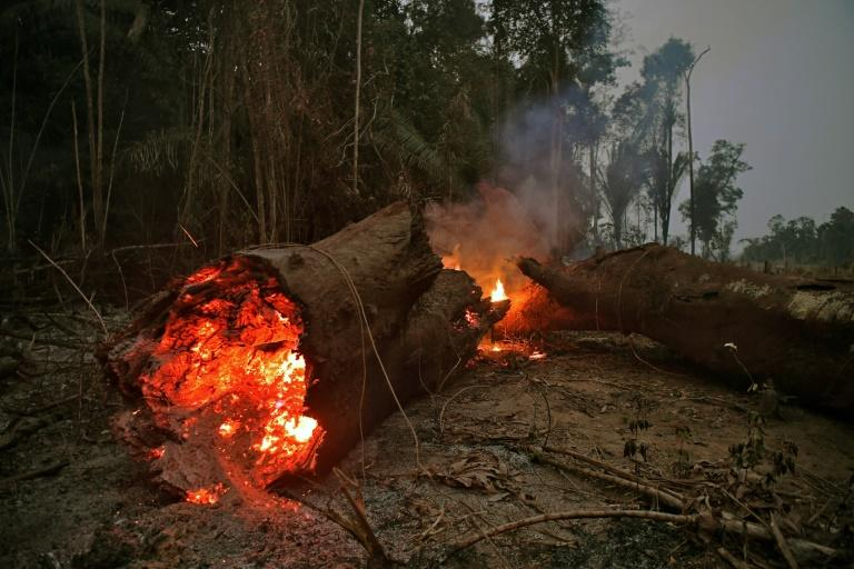View of fire in the Amazon rainforest, near Abuna, Rondonia state, Brazil, on August 24, 2019 (AFP Photo/CARL DE SOUZA)
