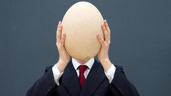 World's Largest Egg For Sale