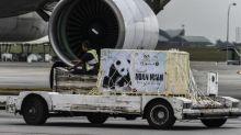 Second giant panda cub born in Malaysia