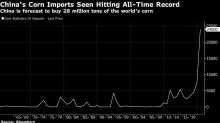 Corn Is Surging as U.S. Sees China Imports at All-Time High