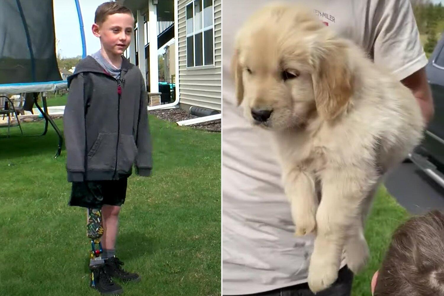 Minnesota Boy with Prosthetic Leg Finds Best Friend in Golden Retriever  Puppy Born Without Paw