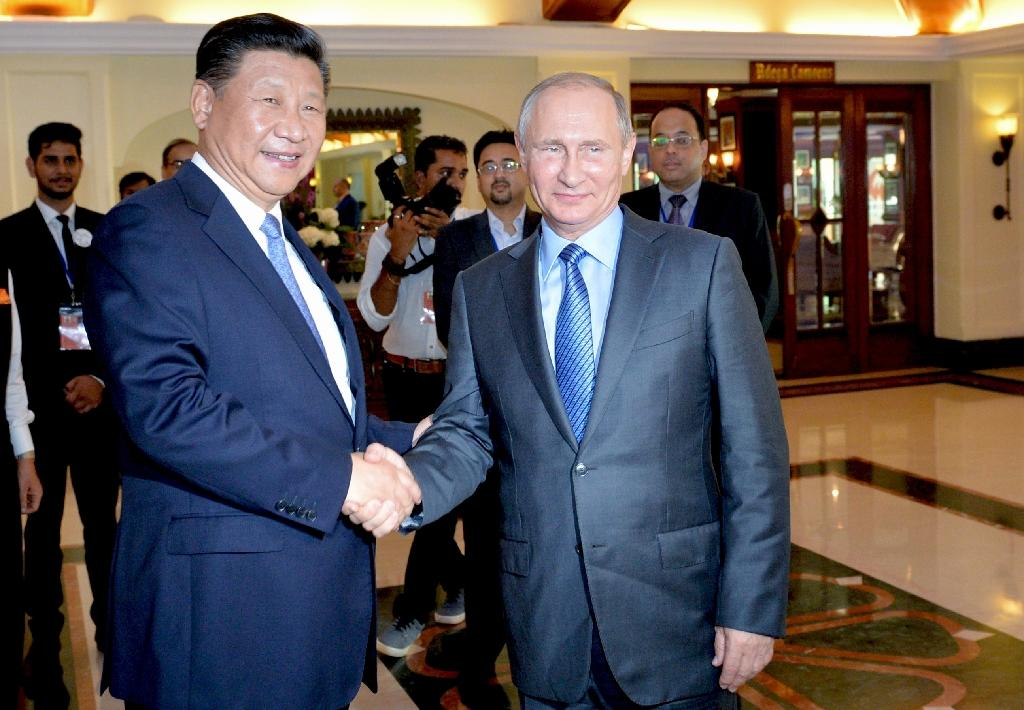 Chinese President Xi Jinping shakes hands with Russian President Vladimir Putin at the BRICS Summit in Goa on October 15, 2016 (AFP Photo/)