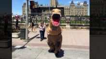 Woman Charged For Scaring Horses While Dressed in A Dinosaur Costume