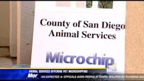 Animal services offering pet microchipping