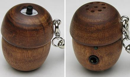 Evergreen's do-it-yourself Acorn DAP and speaker pair -- but why would you?