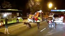 Taxi driver taken to hospital following BKE accident involving wild deer