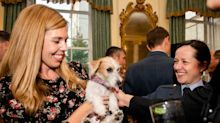Carrie Symonds hosts military reception in another excellent floral dress