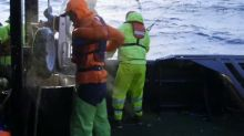 Ouch! Painful injuries send 'Deadliest Catch' boat back to port