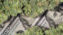 Is Curaleaf a Good Cannabis Stock to Buy Now?