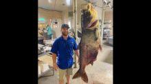 'A straight up monster.' World record 125-pound bighead carp caught by Missouri man