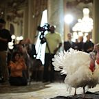 Seven ways Donald Trump could make a Thanksgiving's dinner of the turkey pardoning