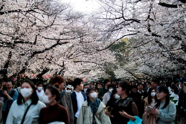 Japanese officials asked people to avoid large gatherings over the coronavirus outbreak (AFP Photo/Behrouz MEHRI)