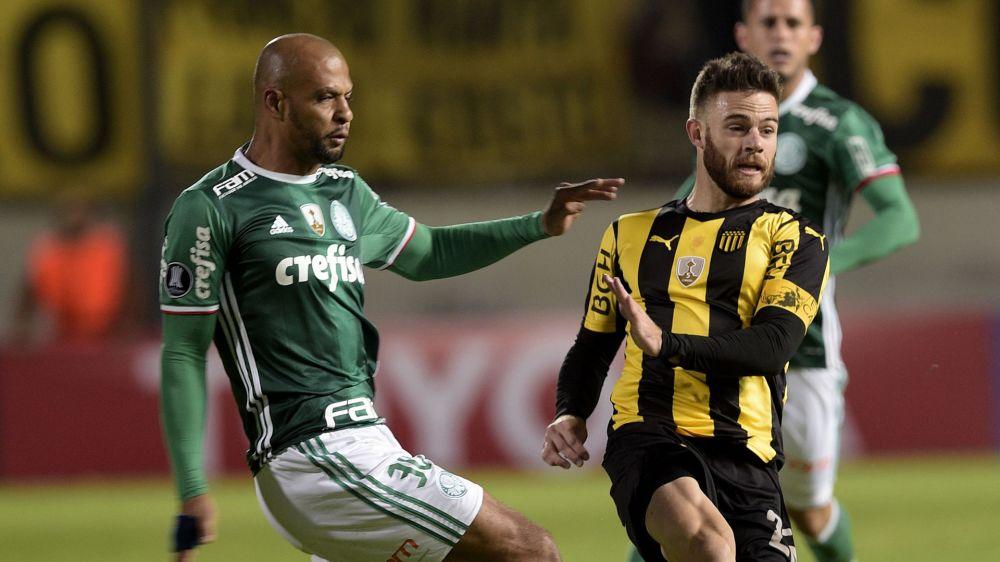 Rissa Peñarol-Palmeiras, Felipe Melo stangato: 6 turni di squalifica