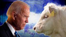 Biden's not coming after beef. But should he?