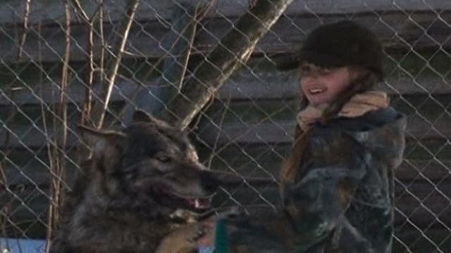 Mom and Daughter Adopt Orphaned Wolves