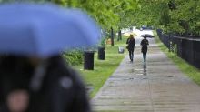 Teddy forecast to bring heavy rain, wind to parts of Atlantic Canada