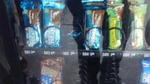 Raccoon Caught Inside High School Vending Machine, Lurking Among Snacks